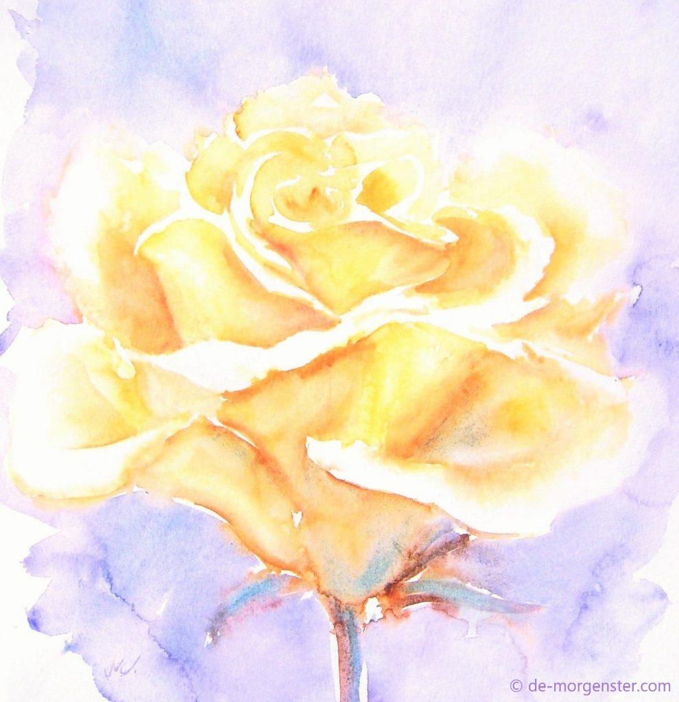 praktijk de gouden roos